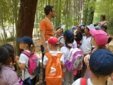 Year 2 Trip to Diomidous Botanical Garden